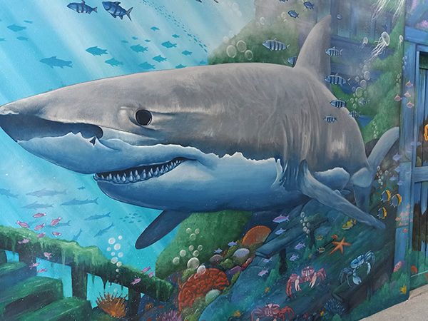 star lab blog - shark mural